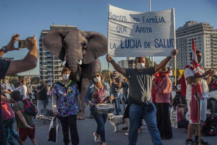 Argentina: más de 50 días de lucha de los trabajadores de la salud en Neuquén