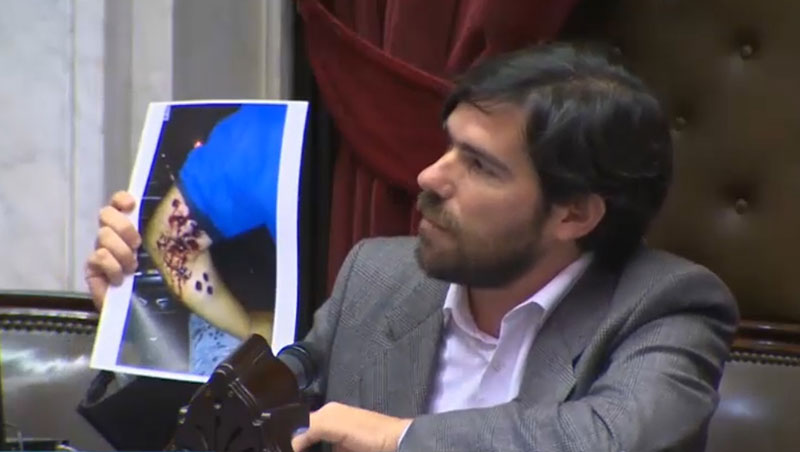 Resultado de imagen para Nicolás del Caño, diputado nacional