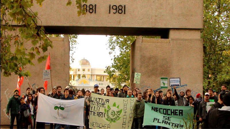 Marchan por la legalización total de la marihuana