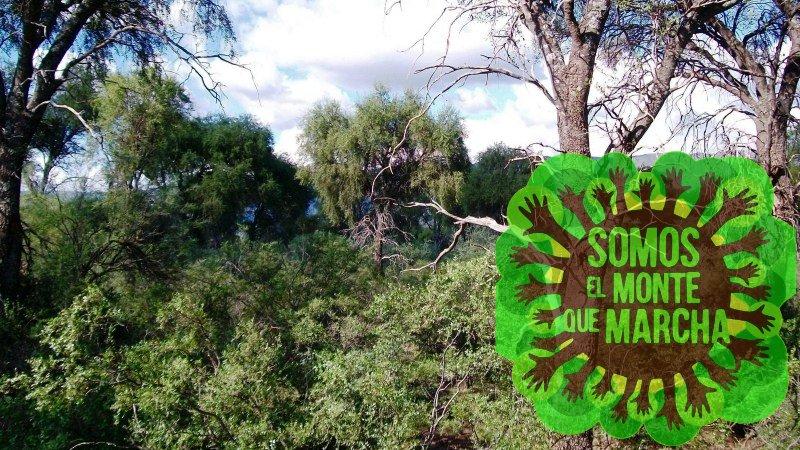 Nueva marcha en Córdoba contra la Ley de Bosques