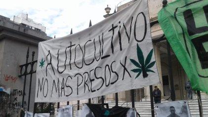 Piden por la libertad y el sobreseimiento de Damián Raña, el joven cultivador de Ensenada