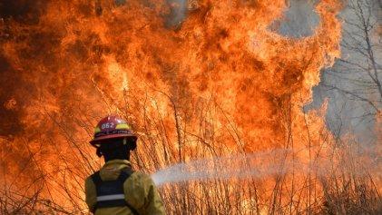 Más de la mitad de las provincias de Argentina en llamas: el 95 % son quemas intencionales