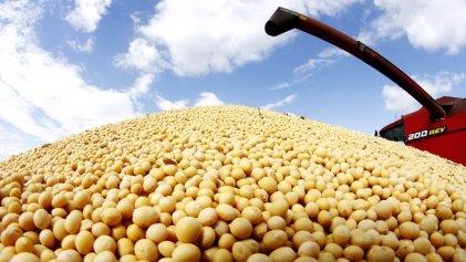 """La """"recuperación de tierras"""" que banca el Gobierno: un millón de hectáreas para el agronegocio"""