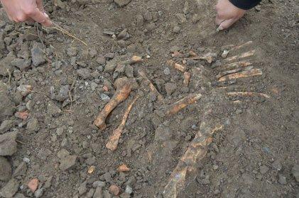 Comunidad mapuche denuncia que restos óseos podrían pertenecer a desaparecidos