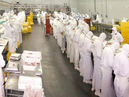 Trabajadores de la carne reclaman bono de fin de año y amenazan con parar