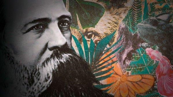 El marxismo y los orígenes de la crítica ecológica