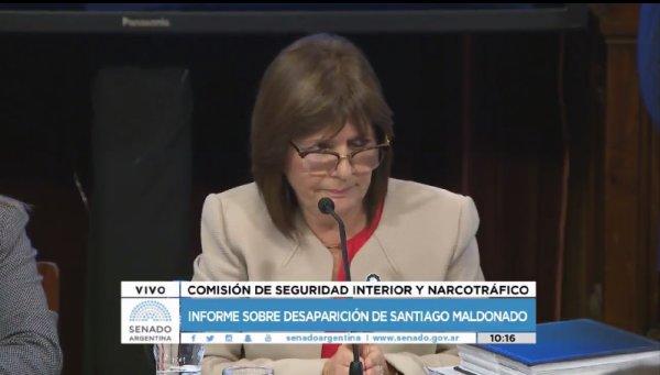 """Patricia Bullrich habla en el Senado: """"Los mapuches son un grupo de extrema violencia"""""""